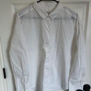 A New Day Button Down Shirt